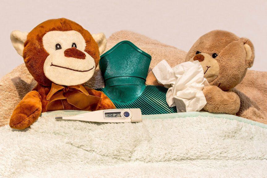 Grippaler Infekt und Homöopathie